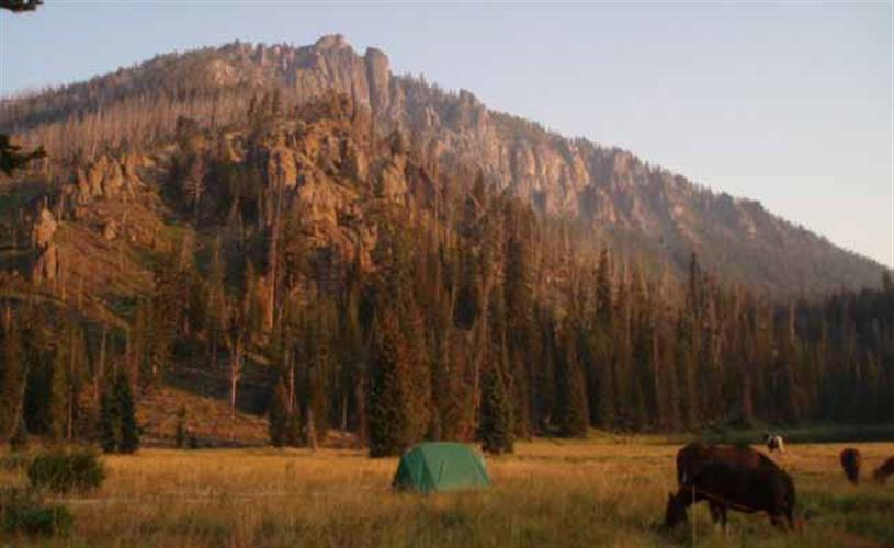 Yellowstone Park Pack Trip