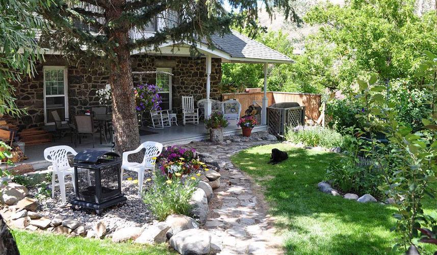 Backyard in full bloom