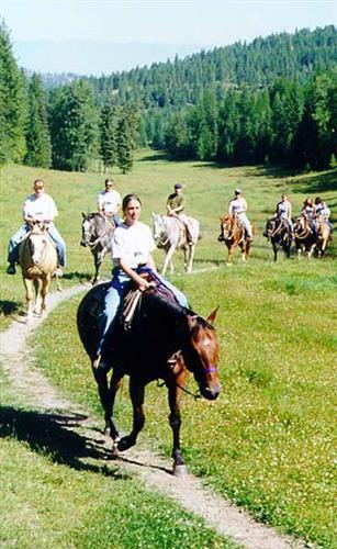 ride through the meadow